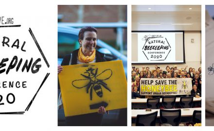 Urban Beekeepers Look to Inspire New Generation